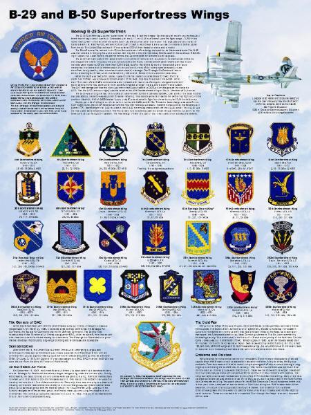 Strategic Air Command Car Emblem